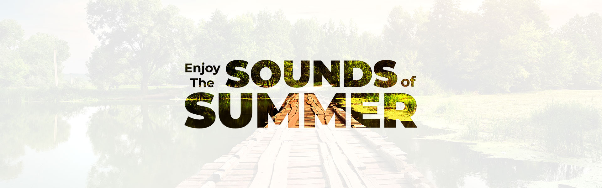 Summer Banner - Nardelli Audiology