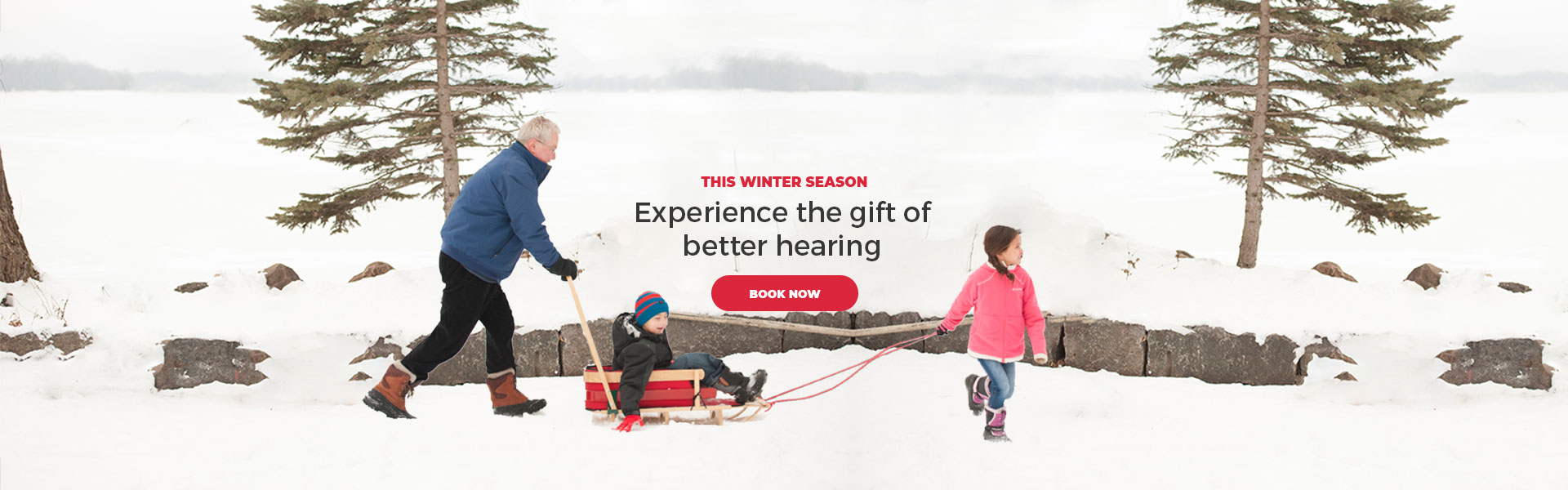 Winter Banner - Nardelli Audiology